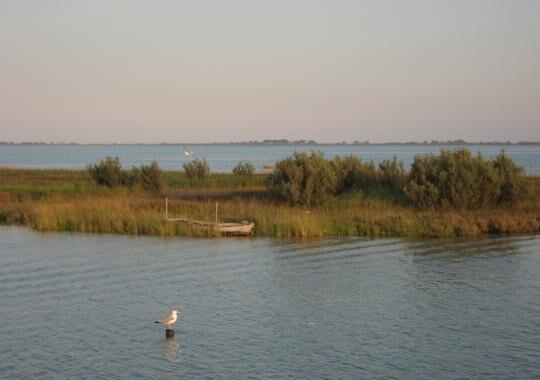 1-laguna-di-marano-1496908227